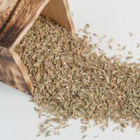 semi di finocchietto selvatico