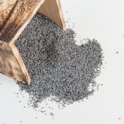 semi di papavero blu