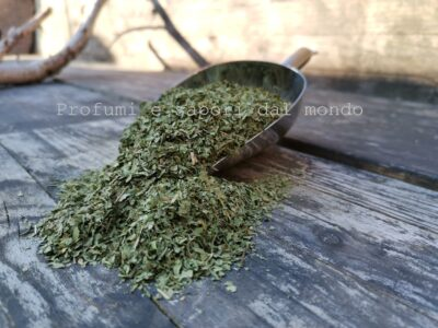 foglie di coriandolo
