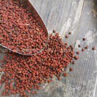 semi di annatto achiote